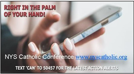Catholic Action Network Text Alerts